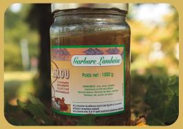 La Garbure landaise
