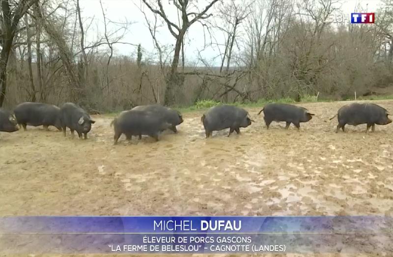 Reportage TF1 du 23 février 2021